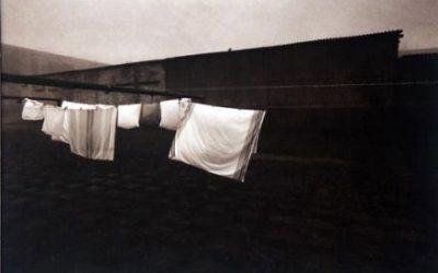 Įlaikinimas ir įvietinimas Aleksandro Ostašenkovo fotografijose