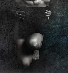Piktorealistinė Alvydo Šalkausko fotografijos kalba