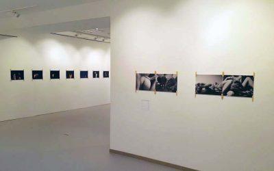 """Galerijoje """"Ars et Mundis"""" Kaune – Remigijaus Venckaus fotomeno paroda"""