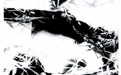 Fotografijos istorijos ekskursai Rimgaudo Malecko kūryboje